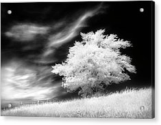 Acrylic Print featuring the photograph Heavenly Places by Dan Jurak