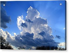 Acrylic Print featuring the photograph Heavenly Sunlight by Kathryn Meyer