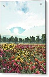 Heavens Eye Acrylic Print