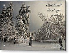 Heavy Laden Christmas Card Acrylic Print by Lois Bryan