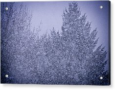 Heavy Snow Acrylic Print by Mick Anderson