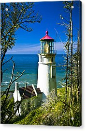 Heceta Lighthouse I Acrylic Print by Dale Stillman