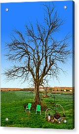 Hedge Apple Tree Acrylic Print