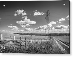 Acrylic Print featuring the photograph Hedge Laying. by Gary Gillette