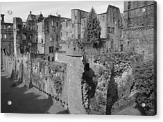 Acrylic Print featuring the photograph Heidelberg Castle Behind The Scenes by Corinne Rhode