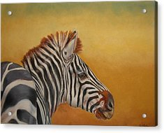 Hello Africa Acrylic Print by Ceci Watson