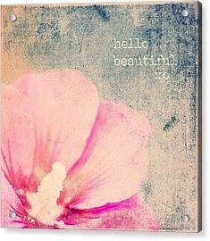 Hello Beautiful Acrylic Print
