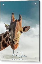 Acrylic Print featuring the photograph Hello Down There by Karen Lewis