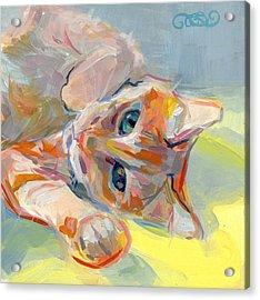 Hello Kitty Acrylic Print by Kimberly Santini