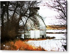 Acrylic Print featuring the photograph Hello There by Julie Hamilton
