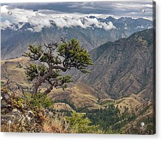 Hells Canyon Acrylic Print by Leland D Howard