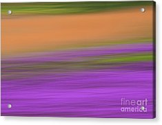 Acrylic Print featuring the photograph Henbit Abstract - D010049 by Daniel Dempster