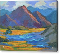 Acrylic Print featuring the painting Henderson Canyon Borrego Springs by Diane McClary
