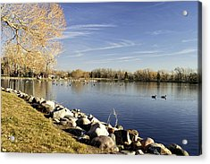 Henderson Lake Waiting For Winter Acrylic Print by Tom Buchanan