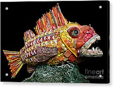 Henry The Fish Acrylic Print by Bob Christopher