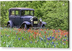 Acrylic Print featuring the photograph Henry The Vintage Model T Ford Automobile by Robert Bellomy
