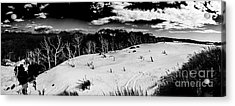 Henty Dunes Tasmania Acrylic Print by Jorgo Photography - Wall Art Gallery