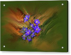 Acrylic Print featuring the digital art Hepatica Nobilis Painterly #h4 by Leif Sohlman