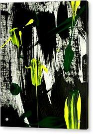 Her Fields Of Folly Acrylic Print by Rene Avalos