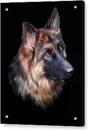 Hera Acrylic Print by Julie L Hoddinott