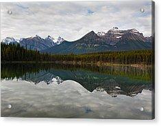 Herbert Lake Reflections  Acrylic Print by George Oze