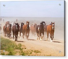 Acrylic Print featuring the digital art Herd Of Horses During The Great American Horse Drive On A Dusty Road by Nadja Rider