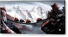Herd Of Mountain Yaks Himalaya Acrylic Print