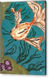 Here Fishy Fishy Acrylic Print by Laura Lillo