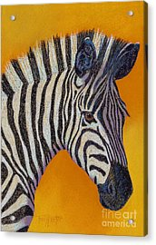Here's Lookin At You Acrylic Print by Tracy L Teeter