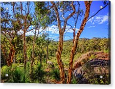 Acrylic Print featuring the photograph Heritage View, John Forest National Park by Dave Catley