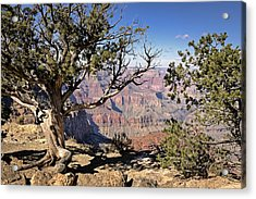 Acrylic Print featuring the photograph Hermits by John Gilbert