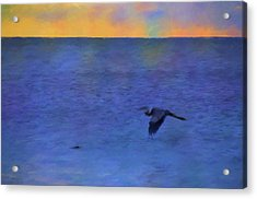 Acrylic Print featuring the photograph Heron Across The Sea by Jan Amiss Photography