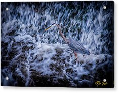 Heron Falls Acrylic Print