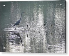 Acrylic Print featuring the photograph Heron In Pastel Waters by Skip Willits