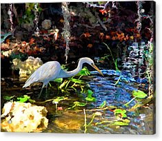 Heron In Quiet Pool Acrylic Print