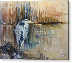 Heron In The Reeds 1 Acrylic Print by Sukey Watson