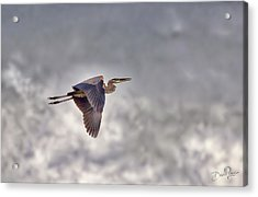 Acrylic Print featuring the photograph Heron In The Storm by David A Lane