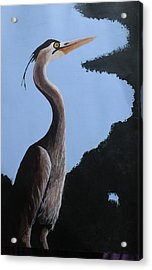 Heron In The Trees Acrylic Print