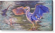 Heron Majesty Acrylic Print