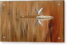 Heron Tapestry Acrylic Print