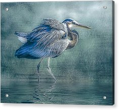 Heron's Pool Acrylic Print