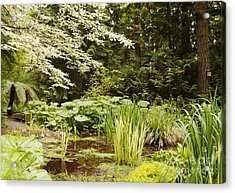 Herronswood Wetlands Acrylic Print