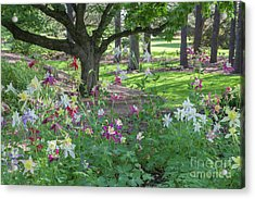 Acrylic Print featuring the photograph Hershey Gardens 1 by Chris Scroggins