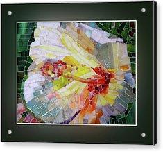 Hibiscus #2 Acrylic Print