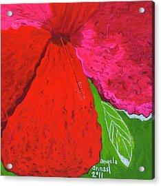 Hibiscus Closeup Acrylic Print by Angela Annas