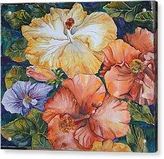 Hibiscus Acrylic Print by Diane Ziemski