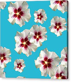 Acrylic Print featuring the mixed media Hibiscus Flower Pattern by Christina Rollo