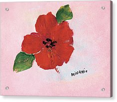 Hibiscus Acrylic Print by Katie OBrien - Printscapes