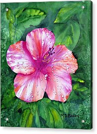 Hibiscus Acrylic Print by Maria Barry