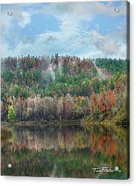 Hickory Forest Acrylic Print